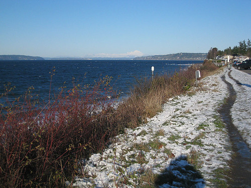 Snowy Day at Edmonds