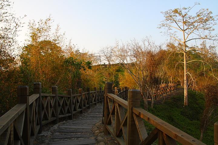 關仔嶺紅葉公園30
