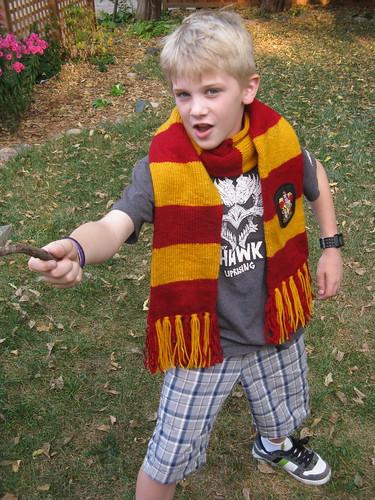 #266 - Harry Potter Scarf