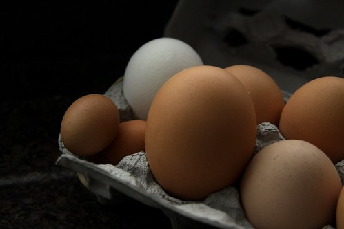 Goodbye Eggs