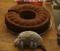 Dust Mite & Rando Cake
