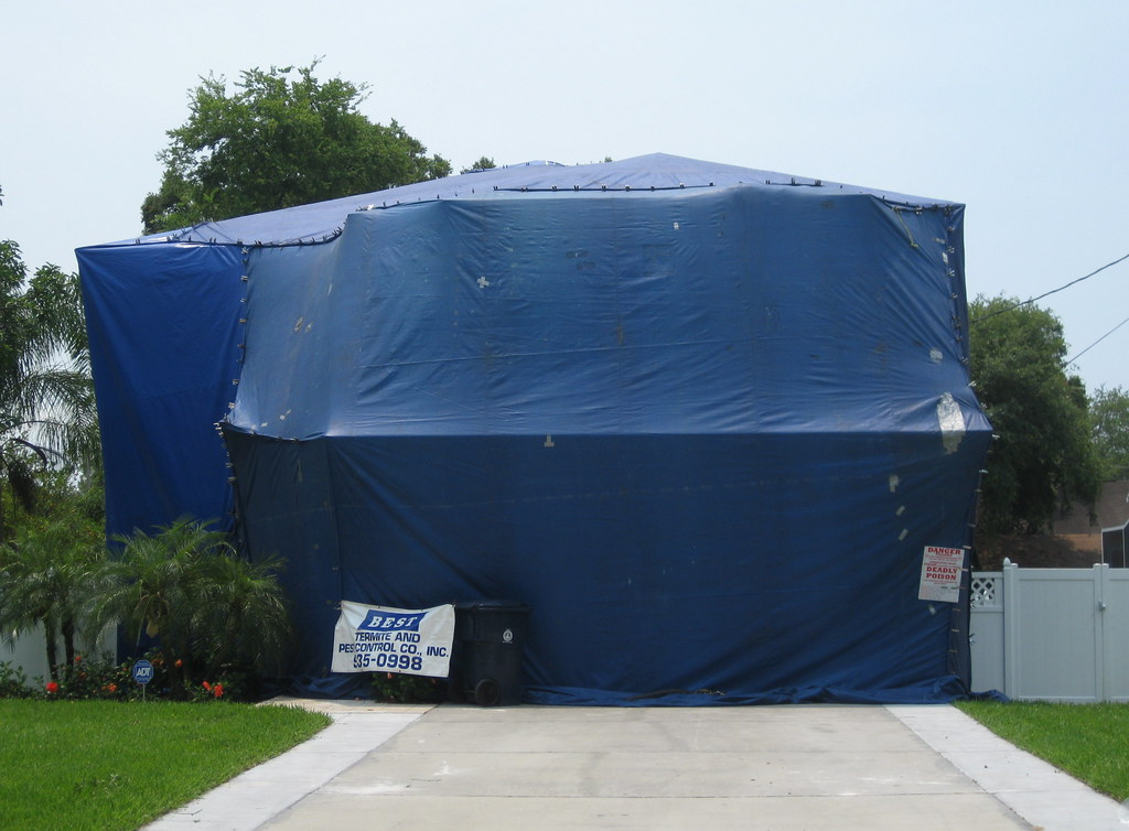 The world 39 s best photos of fumigation and tent flickr Tent a house