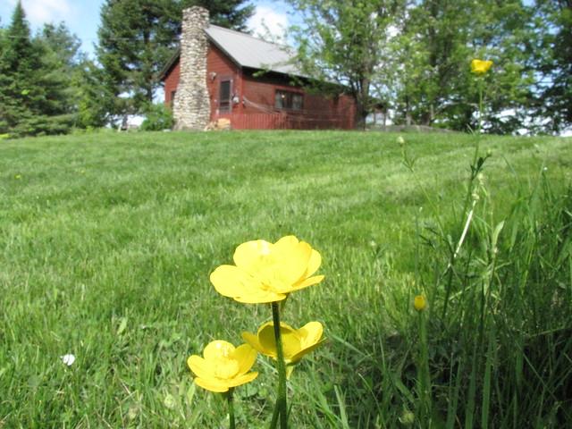Cabin May 2011-21