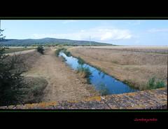 Terre di Maremma - Maremma's lands (Jambo Jambo) Tags: italy panorama landscape nikon italia tuscany toscana grosseto maremma alberese parconaturaledellamaremma vacchereccia jambojambo