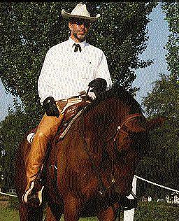 Dauphin my ex western horse
