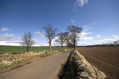 Pretty Day ~ Tayside (Magdalen Green Photography) Tags: road blue rural scotland dundee dyke tayside prettyday longroad
