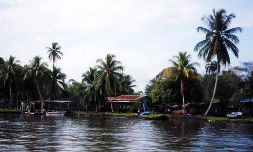 Costa Rica Parismina.1