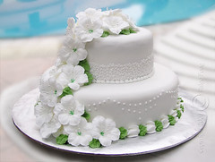 petunia wedding cake (Paige Fong) Tags: flowers wedding food love cake dessert design engagement celebration icing celebrate decorate fondant buttercream royalicing