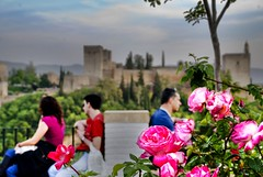 Alhambra at dusk / Atardecer en la Alhambra (pasotraspaso. Jesus Solana Fine Art Photography) Tags: rose garden landscape atardecer photography spain nikon europe photos dusk balcony rosa paisaje alhambra granada vista viewpoint mirador albaicin mywinners nikond80 aplusphoto pasotraspaso jesussolana