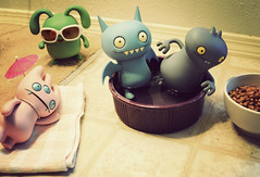 All Summer Long (revlimit) Tags: party summer pool toys nikon vinyl catfood ox explore tray nikkor 13 sunbathing uglydolls icebat babo d300 waterdish mypoorcat 2880f3356