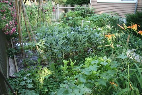 home garden 1