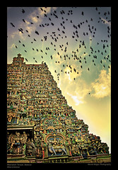 Madurai Towers (Light and Life -Murali ) Tags: india madurai tamilnadu meenakshi gopuram explored tamilculture