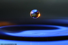 DROP (MOHAMMED AL-SALEH) Tags: drops drop kuwait     colorphotoaward alsaleh kvwc kuwaitvoluntaryworkcenter