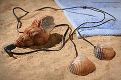 La Mer : Plage 3 ( New Mp3 : Listen to the sea )