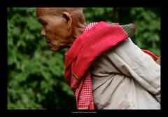 Cambodia  422