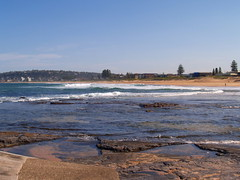 (handsofzoe) Tags: spring north come has narrabeen