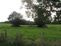 The site of the old railway cutting