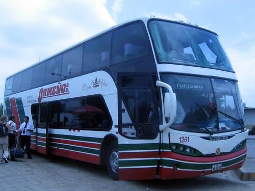 bus internacional