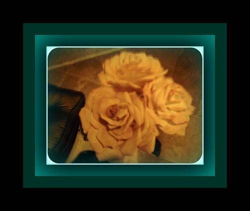 Kuku Coffee filter roses