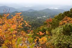 遠くに旭岳温泉