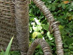 garden wicker