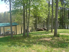 Lake Place 1 (Realtorldy) Tags: virginia oldwomanscreek leesvillelake flattopcove grenta