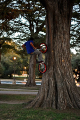 san pedro park tree ride (Lunaphotography) Tags: sanantonio 50mm bmx chrome huge manual 18 fakie treeride sanpedropark
