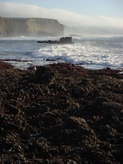 MartinsBeach_2007-035 (Martins Beach, California, United States) Photo
