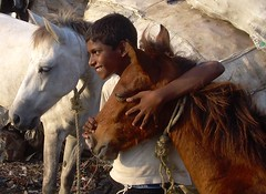 Friends (jmanj) Tags: city horses urban india children metro cities mumbai urbanindia abigfave aplusphoto ysplix machhimarnagar