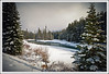 Spring Snowfall (Linda JP) Tags: snow creek spring banff nearlakelouise