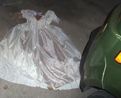 Halloween dress before running it over