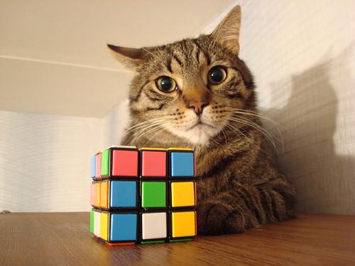 Rubiko kubikas & Kipshas