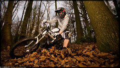 #6 (Jon Ridley) Tags: autumn mountain leaves bike bicycle sport race umbrella canon giant leaf woods ride glory flash extreme mountainbike downhill trail dh mtb mountainbiking rider brolly watford offcamera sigma1020 kitley whippendell strobist 40d