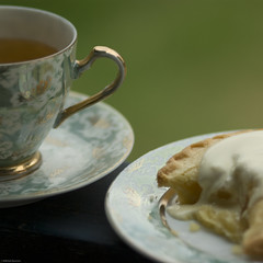 Afternoon Tea (chiaralily) Tags: china stilllife detail macro green home tea australia melbourne cc creativecommons teacup relaxation afternoontea squarecrop applepie bonechina flickrstock themacrohousehold chiaralily