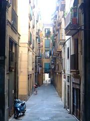Mercat Sant Josep, Barcelona (ChihPing) Tags: barcelona travel spain europe market f100 larambla finepix fujifilm sant boqueria laboqueria rambla mercat 市場 西班牙 josep 富士 巴塞隆納 mercatsantjosep f100fd 蘭布拉斯大道 蘭布拉大道 蘭布拉 蘭布拉斯 聖約瑟 聖約瑟市場 布克利亞