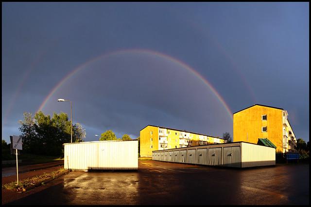 25/52 Rainbows