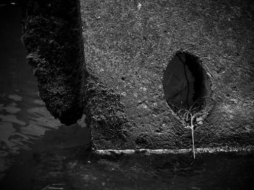 Wet Hole