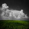 Sooner Or Later (In B&C) (Philippe Sainte-Laudy) Tags: sky green nature clouds photoshop landscape bravo bc o bec ogm 500x500 firstquality opl nikond200 superaplus aplusphoto megashot theunforgettablepictures elitephotography philippesaintelaudy theperfectphotographer thegardenofzen theroadtoheaven tup2 world100f 240x240 spiritofphotography theenchantedcarousel magicdonkeysbest atqueartificia vision100