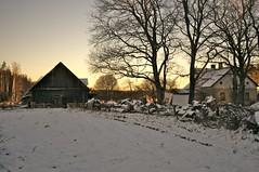 Sunset in Countryside (liber) Tags: wood trees sunset orange white house snow tree canon grey iso100 mark iii 28mm latvia diagonal hut f18 riga eos1d 1ev hpexif 13200sec