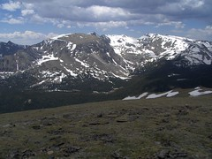HPIM1223 (jimvickers) Tags: colorado elk rockymountainnationalpark continentaldivide bouldercreekpath summer2008