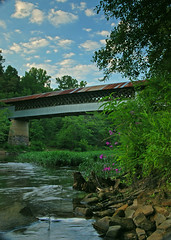 Swann Covered Bridge with Clouds & Wildflowers (outsideshot) Tags: summer clouds alabama wildflowers swanncoveredbridge locustforkriver