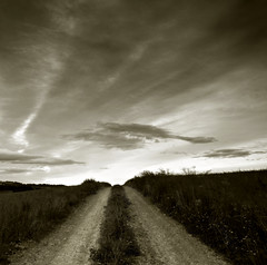 - Endless Road Moving Sky - (Seung Kye Lee - Fine Art Landscape Photography) Tags: world bw copyright reflection nature weather norway sunrise canon landscape dawn mono topf75 scenery europe outdoor earth buddha fineart  philosophy korea explore lee seoul duotone roads akershus seung kye incamera shadowandlight morningmood interestingness29 flickrsbest singhray ndgradfilter kunstfotografi wwwbildesentralenno 12factorsofdependentorigination wwwseungkyeleezenfoliocom landskapsfotograf copyrightseungkyelee