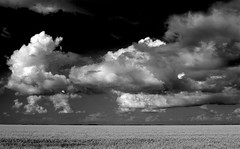 Wide Open Spaces (Ken Yuel) Tags: beauty clouds manitoba stormclouds openspaces bej canolafields abigfave ultimateshot goldstaraward digitalagent