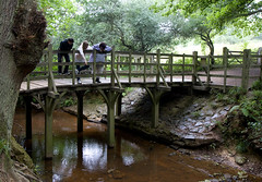 Pooh Bridge (Fred Dawson) Tags: bridge forest river sussex pooh winnie ashdown