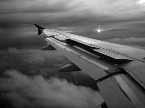 48b - plane wing