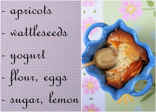 Apricot and Wattleseeds Tea Cakes