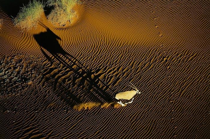 Lixão de imagens #14 fotografias aéreas
