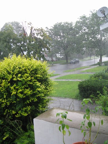 Another view of the rain