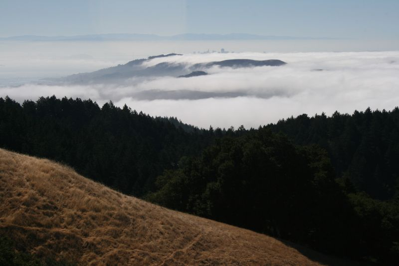 On Mt. Tamalpais
