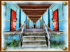 The Halls Of Doom (BACKYard Woods Explorer) Tags: abandoned weeds reddoor abandonedbuildings casinosupplywarehouse backyized